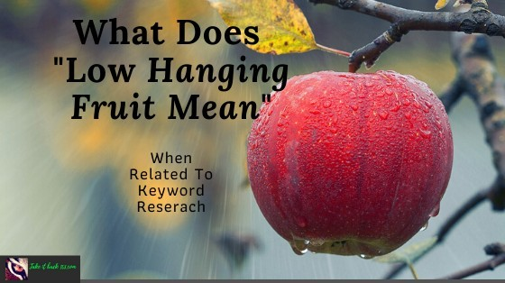 What Does Low Hanging Fruit Mean - Feature Image Branded with new logo