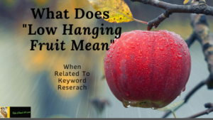 What Does Low Hanging Fruit Mean branded with new logo Feature Image for Article