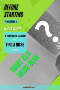 What is a Niche Blog - Pinterest pin